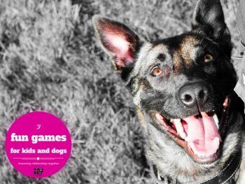 fun-games-for-kids-dogs-kiddi-1