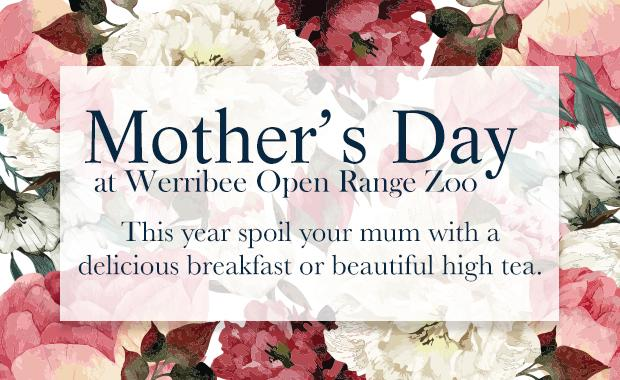 Werribee Mothers Day Banner v2